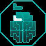 brain_logo4_2-01